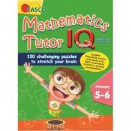 Mathematics Tutor IQ Questions Primary 5-6